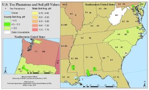 US Plantations and Soil pH