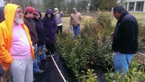 Buddy Lee (black jacket) leads a tour and discussion at his Transcend Nursery (Independence, LA).
