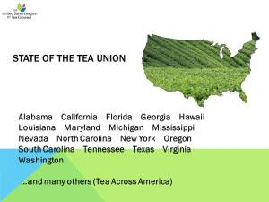 State of the Tea Union (Image)