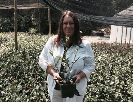 Grower Feature - Camellia Forest Nursery - Christine